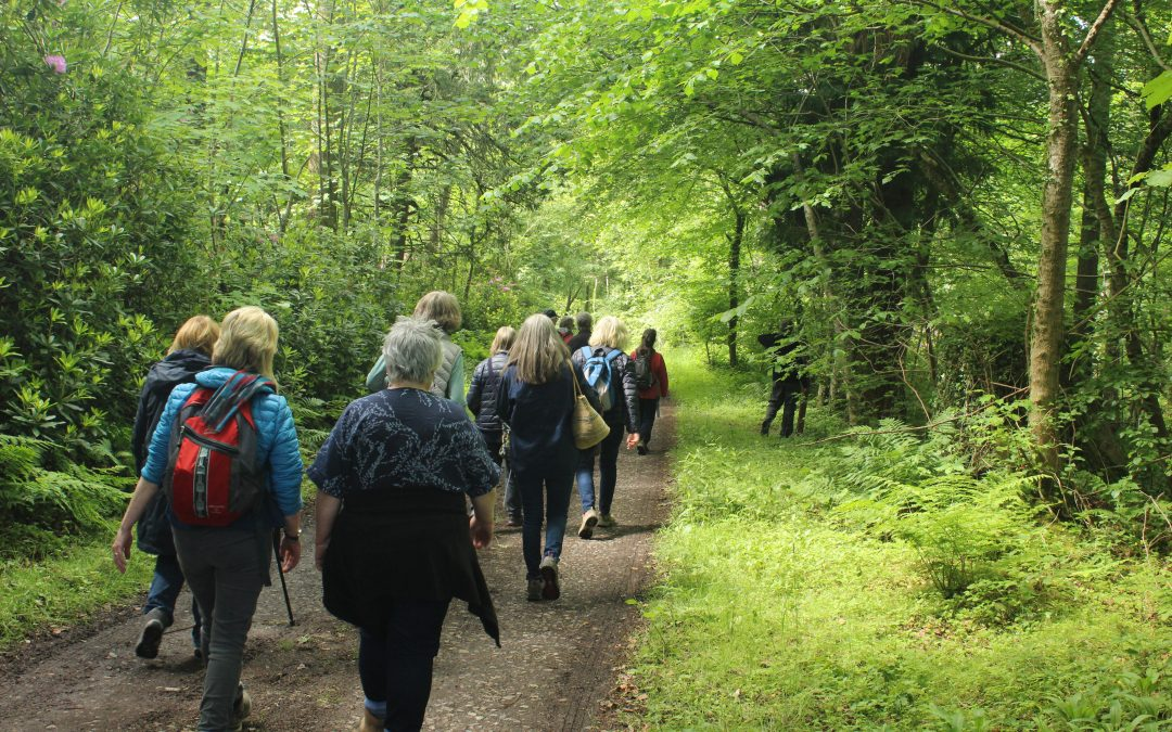 Old Melrose Walk and Talk event